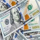 환율,달러,최근,미국,정부,확산