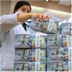 환율,달러,외환당국