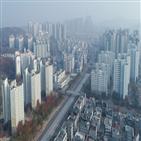 아파트,김포시,김포,전용,서울,거래,조정대상지,일대,호가,매물