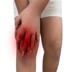무릎,파열,경우,관절,반월상연골판