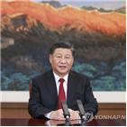 경제,중국,미래,세계,주석,협력,아태,발전