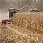 식량,중국,세계,가격,코로나19,자국,최근,옥수수,미국,곡물