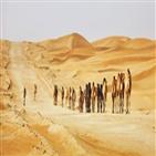 카라반,실크로드,낙타,중국,사막,전파,서역,사람,바닷길,신라