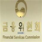 주식,금융당국,자금,허위