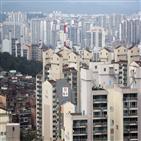 아파트,서울,거래량,거래,주택,증가,정부,전세난,공급,수도권