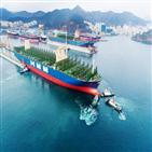 투입,물동량,임시선박,추가,선사,선박,미주항로,국내