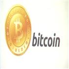 비트코인,가격,달러,테슬라,보고서,사이,씨티은행
