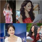 김효진,정복기,사생활,종영,시청자