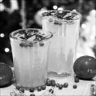 음료,출시,캐모마일