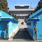 달러,북한,원화,가치,평양,환율,코로나19