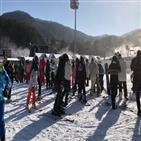 스키장,사람,지역,방역,썰렁