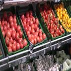 러시아,채소,연해주,온실,공급,과일,재배,코로나19,사태