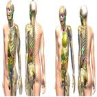 인체,모델,방사선,전산