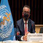 말라리아,사망자,아프리카,코로나19,보고서,지난해