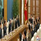 북한,가능성,내년,비핵화,남북,정책,미국