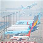 발행,대한항공,아시아나항공,인수,결정,신주,가처분