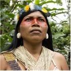 원주민,열대우림,오라,에콰도르,아마존,정부