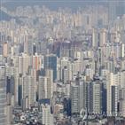 내년,서울,전망,전셋값,건정연은,올해,상승
