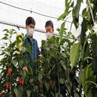 종자,유전자원,농진청,자원,일본,한국,발생,식물,나고야의정서