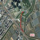 일산,도로,중앙로,차량