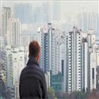 월세,서울,전세,지난달,반전세,집주인,계약,종부세,전용,보증금
