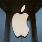 폴더블폰,내년,올해,폴더블,바텍,애플,영업이익,매출,전망