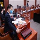 의원,김여정,북한,민주당,처리