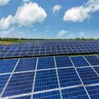 태양광,설비,사업자,발전,정부,가격,전력,거래가