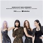 블랙핑크,콘서트,공식,유튜브,라이브스트림,데뷔,정규앨범,글로벌