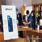 애플,국내,고객,한국,시장