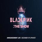 블랙핑크,공식,콘서트