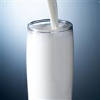 우유,섭취,빈속,영양소,경우,단백질
