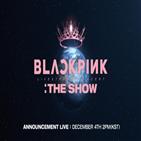 블랙핑크,유튜브,콘서트