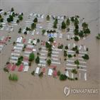 중미,허리케인,기후변화,지역,가뭄,올해,극심