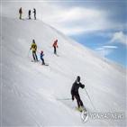 검사,대규모,코로나19,스키장