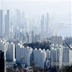 거래,지난달,서울,아파트값,아파트,신고가,다시,재건축,외곽
