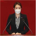 의원,김종인,배현진,위원장