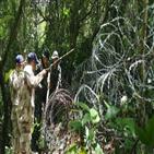태국,확진,총리,국경,코로나19