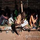 에리트레아,에티오피아,개입,미국,티그라이,분쟁,로이터