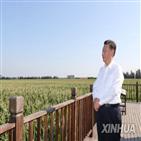 식량,생산,증가,홍수,전년,중국