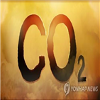 배출량,올해,감소,수준,탄소