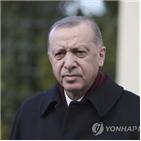 터키,미국,제재,도입,미사일