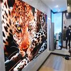 LG전자,마이크로,한국전자전,관계자,삼성전자,LG,제품,디스플레이,화면,다양