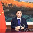 중국,안정,주석,내년,지도부,경제