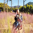전동화키트,수동휠체어,장애인,사업,휠체어,대여,사용