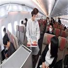 비행,관광,국제
