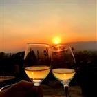 명동,프로모션,와인