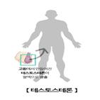 테스토스테론,그룹,당뇨병