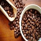 커피,커피머신,원두,제품,전자동,시장,특징