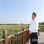 농경지,강조,중국,위해,수입,곡물